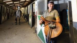 Dieven op zoek naar peperdure paardenzadels op Limburgse maneges