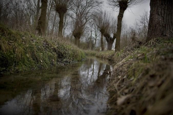 IVN vreest dat het waterleven in de Kingbeek schade oploopt bij het uitdiepen van het Julianakanaal