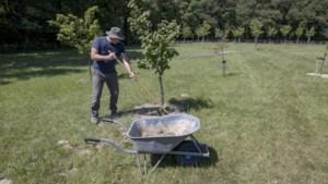 Nieuwe kans voor plan zorgboerderij in Schinveld