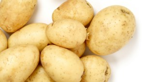 Aardappelverwerker Lomm mag 200 miljoen liter grondwater meer oppompen: 'Hoe kan dit in een tijd van ernstige verdroging?'