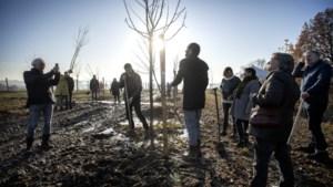 Bomen in Levensbomenbos Kerkrade vanaf vrijdag te adopteren