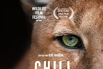 Filmrecensie 'Chili': klassieke natuurfilm met landschappen vol superlatieven