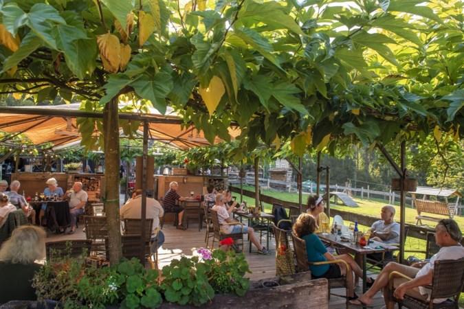 Limburgse horeca in coronatijd: 'Zoek je de grijze golf? Die zit hier op het terras!'