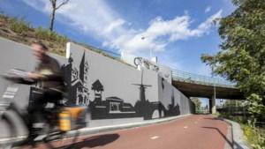 Roermondse landmarks<I></I>sieren voortaan kale wand langs fietspad