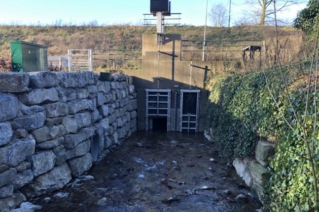 Waterschap neemt maatregelen: Elsloo wordt voortaan beter beschermd tegen wateroverlast