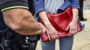 Privacywaakhond: Amnesty schetst 'zorgelijk beeld' over zakkenrollersproject Roermond