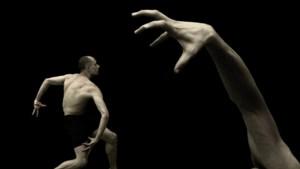Duivels dilemma levert Nederlandse Dansdagen primeur op: voor het eerst een online editie