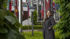 Nieuwe Europese spotprentprijs komt uit Maastrichtse koker: 'De moedige mensen zijn cartoonisten'