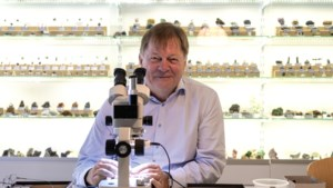 Henk Smeets verzamelt en fotografeert micromineralen: 'Wat het zo leuk maakt is de afwisseling'