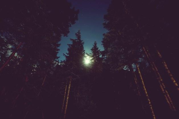 Nacht van de nacht: wandelen in de duisternis in Schinveld