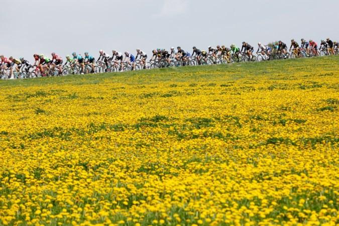 Geen 'Belgische' Amstel Gold Race: 'Kunnen we niet maken'