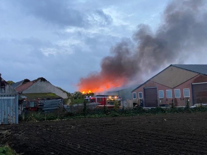 Video: Brandweer moet container wegslepen om brand in loods te kunnen bestrijden