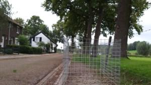 Gemeenten plaatsen korven voor bladeren van bomen in de buurt