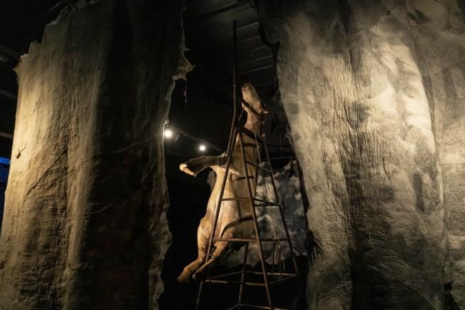 Expositie 'Machtige Maas' maakt van bezoek aan Limburgs Museum in Venlo een theaterspektakel