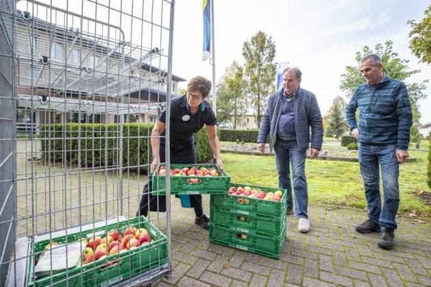 Appeltjes uitdelen in Meijel in naam van boeren en tuinders