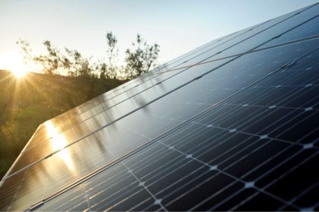 Horst aan de Maas moet snel 350 hectare zonneweides en 7 windturbines krijgen om in 2050 energieneutraal te zijn