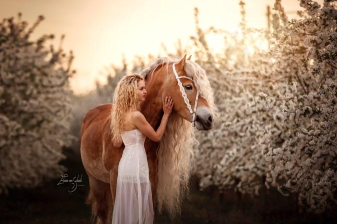 Limburgse Naomi (26) en paard Storm hit op Instagram: 'Wat leuk, jullie lijken op elkaar'