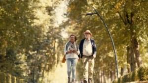 Nieuwe Heerlense amuse-wandelroute Preuve Ongerwaegs moet al na twee weekenden stoppen vanwege nieuwe coronamaatregelen