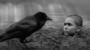 Regisseur Václav Mahoul over 'De Geverfde Vogel': 'Dit is een universeel verhaal, over mensen die anders zijn, die vervolgd worden'