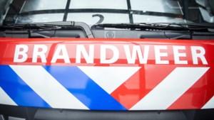 Politie zoekt getuigen van nachtelijke autobrand in Kerkrade