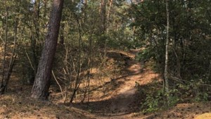 Uit wandelen: een kleine work-out op heuvels en mul zand in Helden