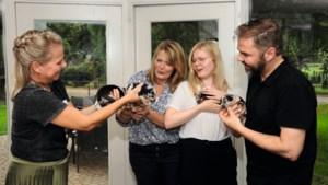 Keuzestress in Lottum: welke puppy gaat het worden?
