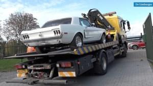 Video: Autobedrijf in Beek spil in georganiseerde hennepteelt