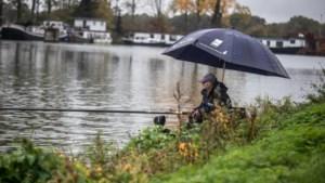 Havenplan Schipperskerk tergt Limburgse sportvissersbond: 'Dit kan desastreuze gevolgen hebben voor de hengelsport'