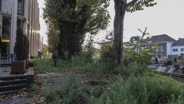 Bewoners Roermond boos over schrappen struiken langs wandelpad: 'Bloemen houden inkijk niet tegen'