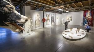 Coronaproof expositie in de Horster Kantfabriek