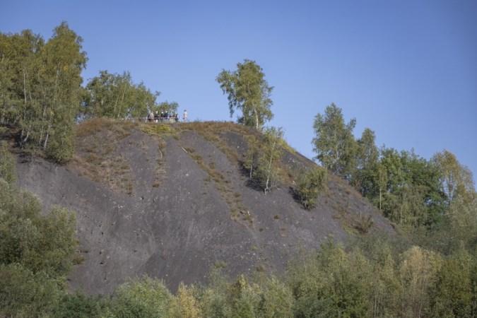 Monumentenstatus voor Heerlense mijnsteenberg is kroon op het werk van actievoerders die berg voor afgraven hebben behoed