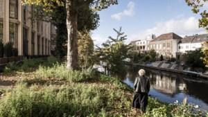 Inkijk of uitzicht: wandelpad langs Roermondse Roer splijtzwam bewoners