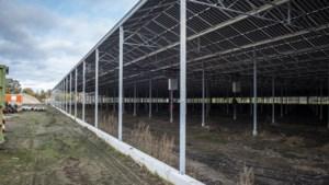 Bouw glastuinbouwkas Meijel ligt voorlopig stil door 'constructiefout'