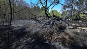 Van blijven naar toch evacuëren: hoe de mindset tijdens de Meinwegbrand kantelde