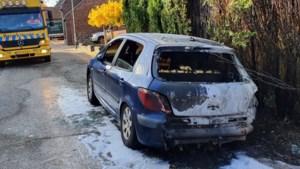 Vraagtekens rond autobrand in Buggenum: wraakactie op politieagent of coniferenpyromaan in actie?