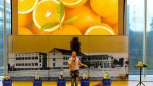 Meer halen uit bier, sinaasappels en T-shirts: zo verrassend kunnen ideeën zijn