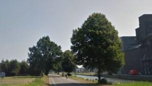Raad wil 'hofje' van tijdelijke woningen aan Suffolkweg in Weert