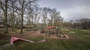 Onderzoek moet aantonen of de Buitenring een rol speelt bij de afnemende kwaliteit van bomen in Brunssums Schutterspark