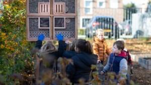 Oproep op Facebook levert basisschool Elsloo insectenhotel op, gemeente zet de verdubbelaar in