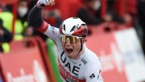 Philipsen sprint in langste Vuelta-etappe naar grootste zege, Roglic blijft leider