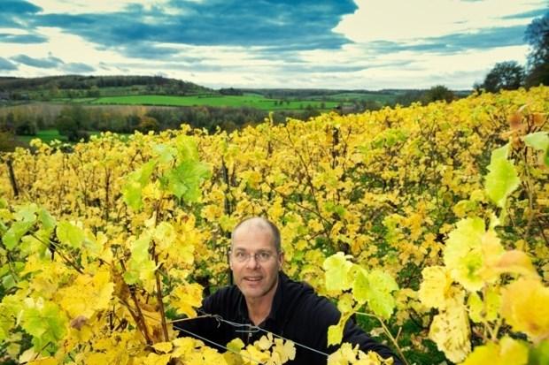 Wijnboer van domein Pietershof in Voeren ruilde cardiologie in voor wijn