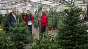 Kerstbomenverkoop over de kop om coronadrukte te ontlopen