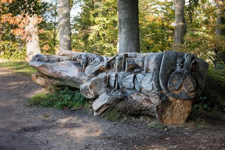 De groene geschiedenis van Kasteelpark Elsloo