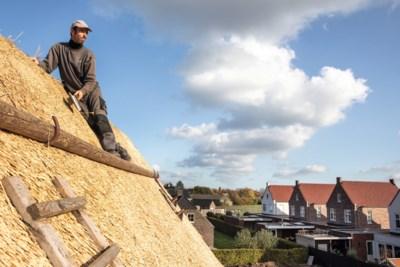 Deze Limburgers werken op de daken: 'Alles wat je op hoogte doet, is gevaarlijk'
