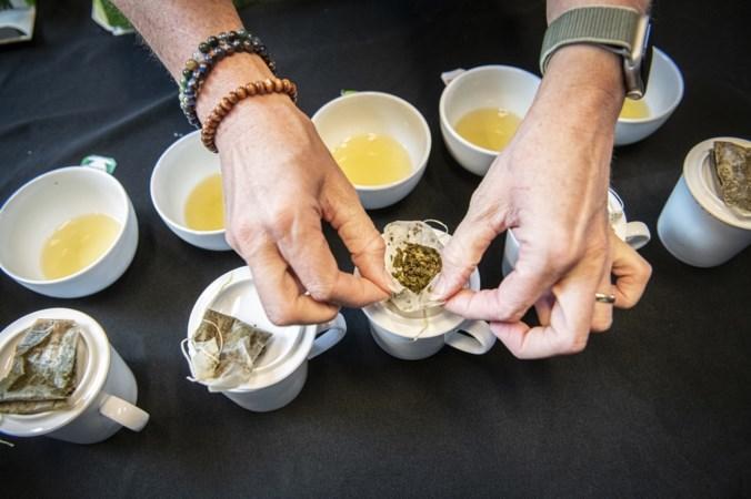 Deze groene thee uit de supermarkt komt als beste uit de test