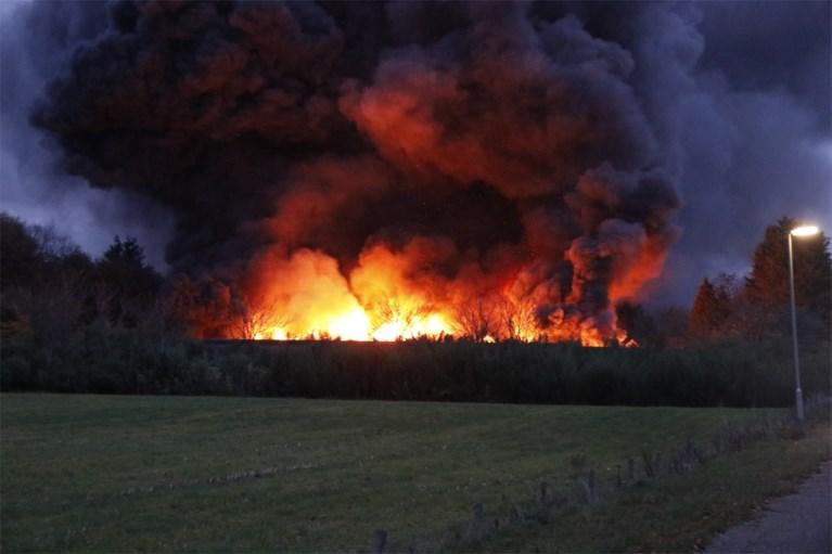 Video: Lege pluimveestallen tot de grond toe afgebrand in Well