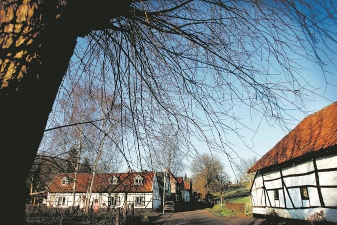 ZOwonen zet in op meer 'kringloopwoningen' in Sittard-Geleen
