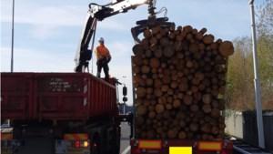 Ruim duizend euro boete voor te hoog geladen boomstammen bij Swalmentunnel
