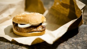 Burger King vraagt opnieuw vergunning aan voor restaurant in Maasmechelen, vlakbij snelweg naar Stein