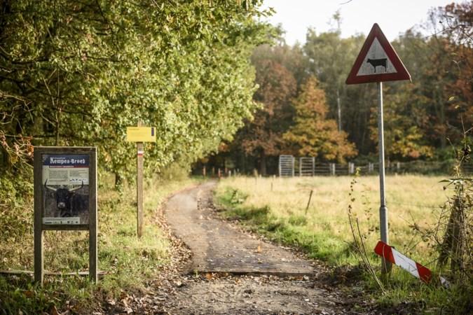 Ecologische Werkgroep vecht planten bomen bij Laurabossen aan: 'Niet goed als deze straks weer uit grond getrokken worden'